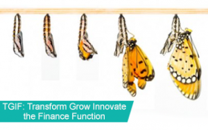 TGIF: Transform Grow Innovate the Finance Function Image