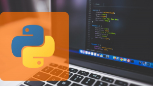 Python Programming for beginners: Quickly learn python Image
