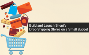 Build and Launch Shopify Drop Shipping Stores on a Small Budget Image
