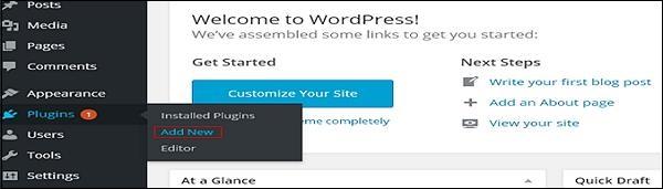 Customize Plugins in WordPress 1