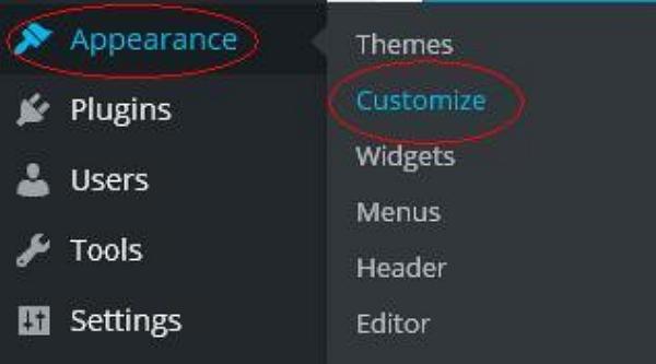 Customize Theme in WordPress 1