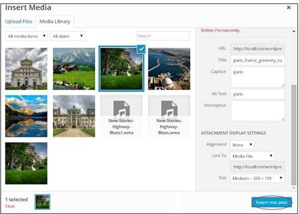 Inset Media files in WordPress 3